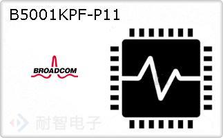 B5001KPF-P11