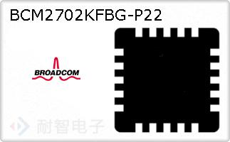 BCM2702KFBG-P22