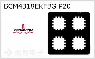 BCM4318EKFBG P20