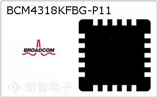 BCM4318KFBG-P11