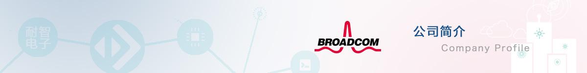 博通(Broadcom)公司介绍